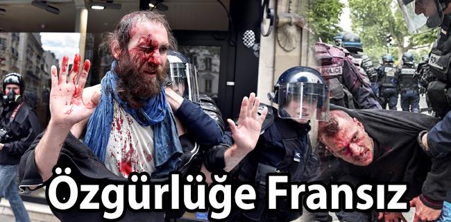 �zg�rl��e Frans�z