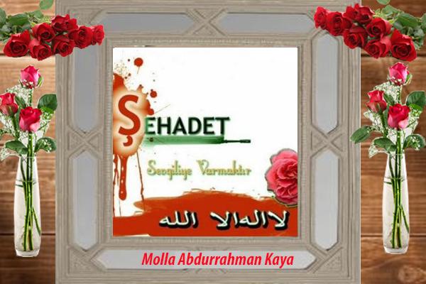 Şehid Molla Abdurrahman Kaya