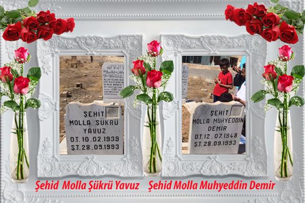 Şehid Mola Şükrü Yavuz ve Şehid Molla Muhyeddin Demir