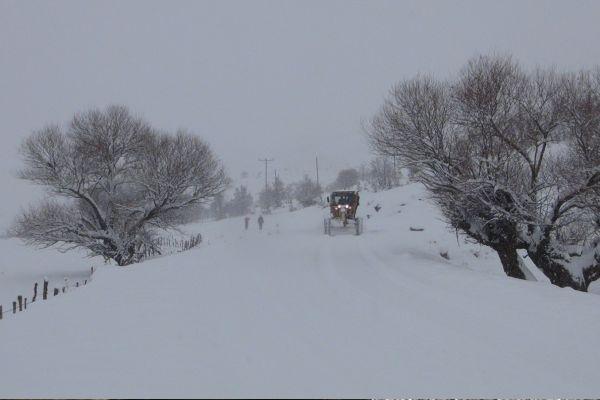 Bingöl`de kar yağışı nedeniyle 121 köy yolu ulaşım kapalı