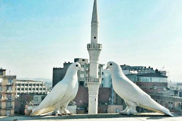 Foto KÖŞE