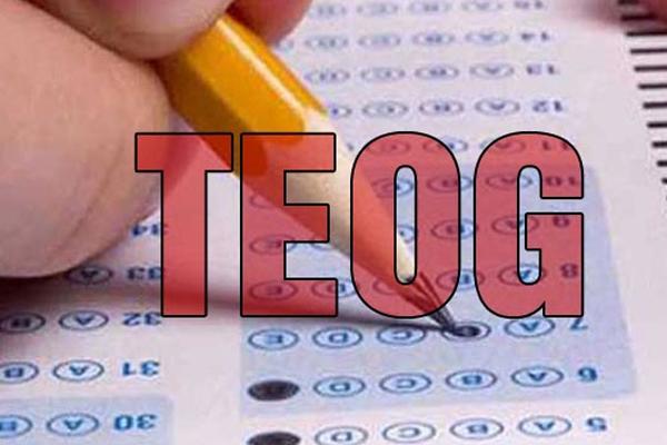 TEOG sonuçları açıklandı