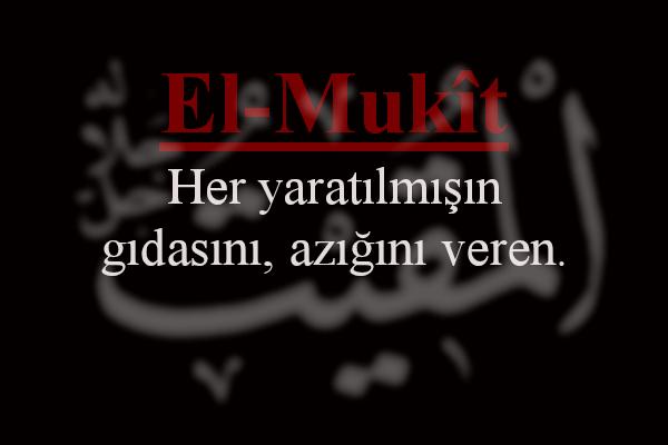 EL-MUKiYT (C.C.)