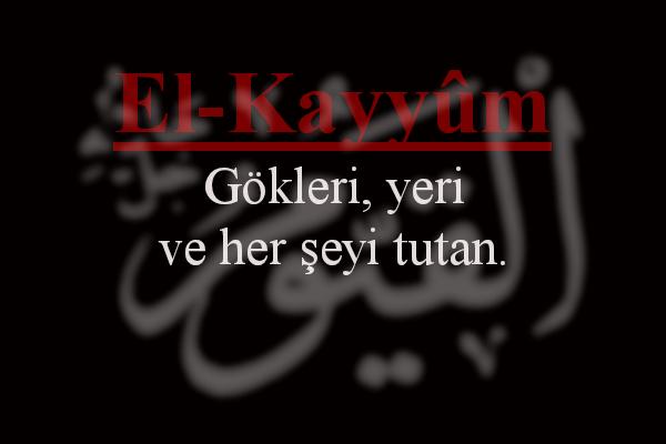 El - Kayyum