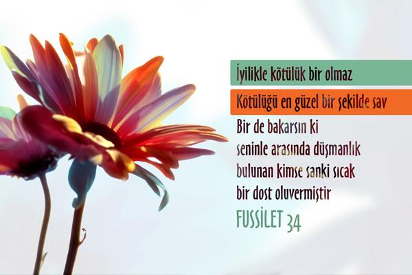Hikmet ve Güzel Öğüt...
