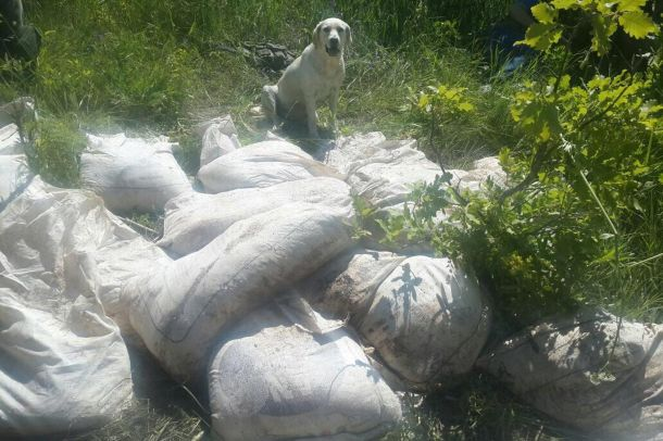 Bitlis'te iki ton amonyum nitrat ele geçirildi