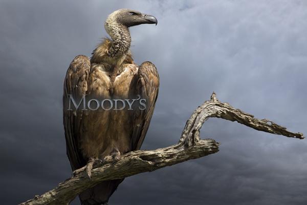 Moody's akbaba gibi!