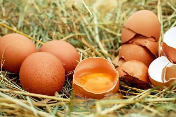 Bakanlıktan yumurtalarda analiz yapılması talimatı
