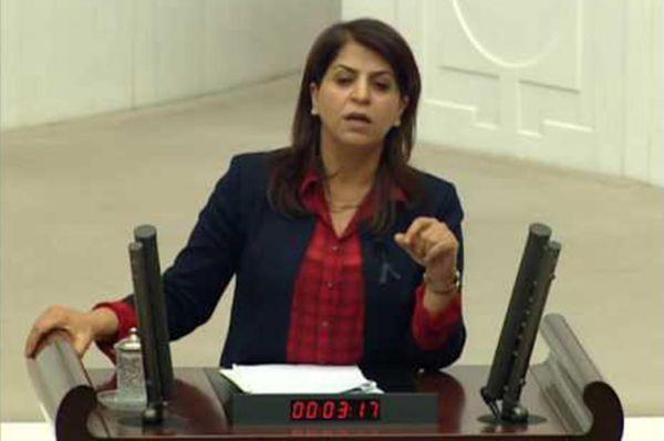 Sibel Yiğitalp Diyarbakır'da gözaltına alındı