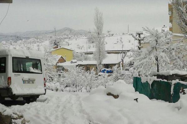 Pervari'de kar nedeniyle eğitime ara verildi