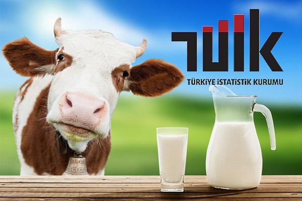 Ocak ayında süt üretimi arttı
