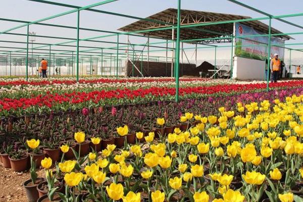 Diyarbakır`da `2 Milyon Çiçek 500 Fidan Projesi`nin açılış töreni yapıldı