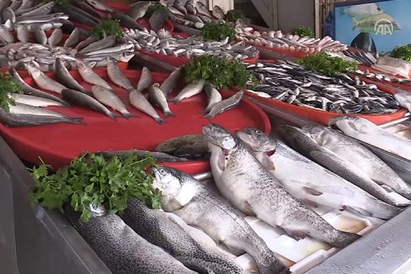 'Fırat'ın balıkları yurt dışına satılıyor