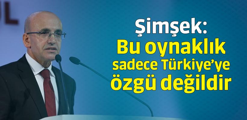 Şimşek: Bu oynaklık sadece Türkiye`ye özgü değildir