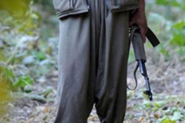 Gri listede yer alan 2 PKK'lı öldürüldü