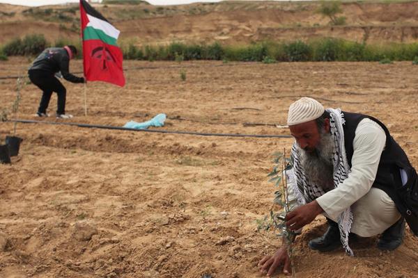 Çete yine Filistin'e dadandı