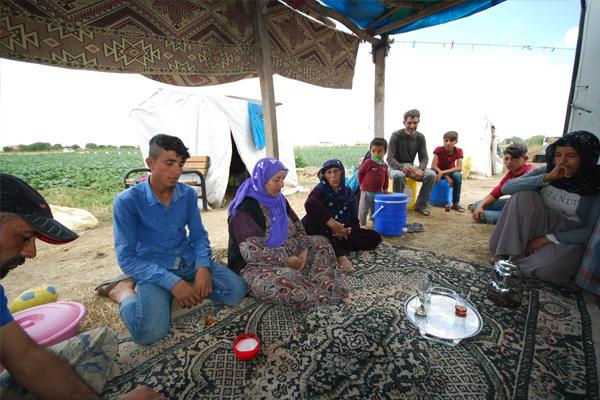 Mevsimlik işçilerin çadırda geçen ömürleri