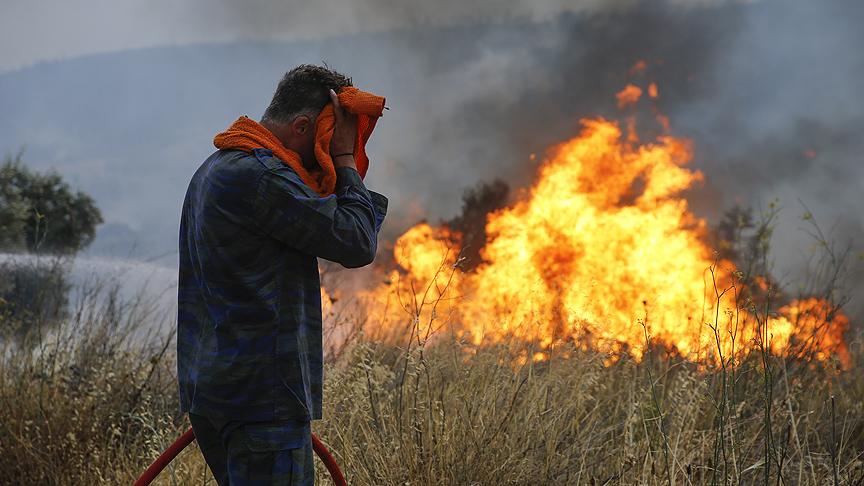 Ormanda çıkan yangın şehre ilerliyor