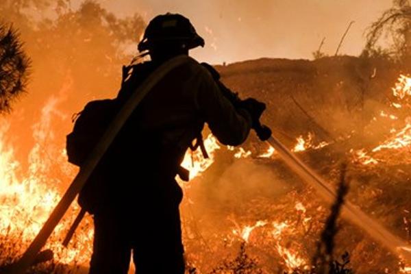 Orman yangını evleri yutuyor!