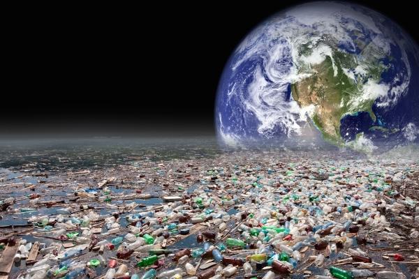 Plastik kirliliğine, plastik yiyen bir mantar çözüm olabilir