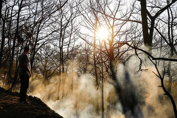 Kumluca`daki orman yangınında 70 hektar alan zarar gördü