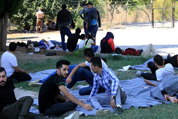 Muğla`da 53 düzensiz göçmen yakalandı