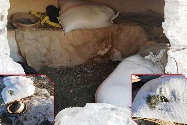 Diyarbakır`da 276 kilogram esrar ele geçirildi