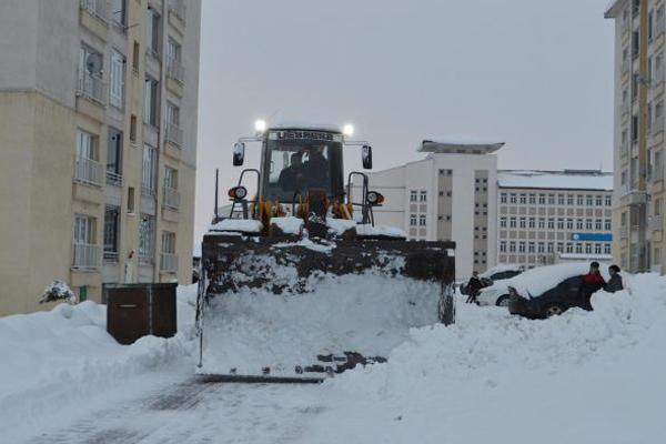 Karla mücadele çalışması başlatıldı