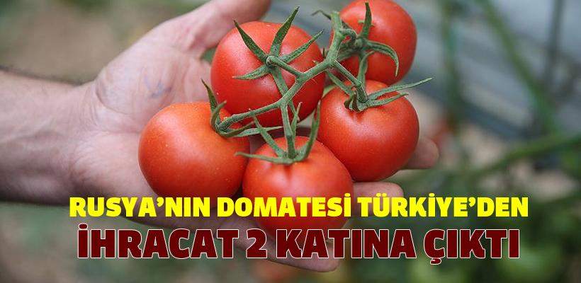 Rusya`nın Türkiye`den domates kotası 100 bin tona çıktı