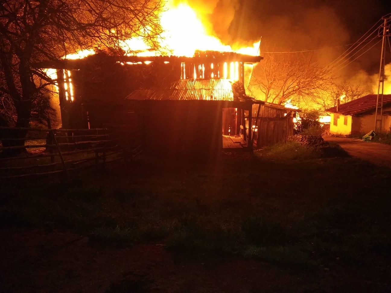 Çıkan yangında 8 ev, 1 ahır ve depo kül oldu