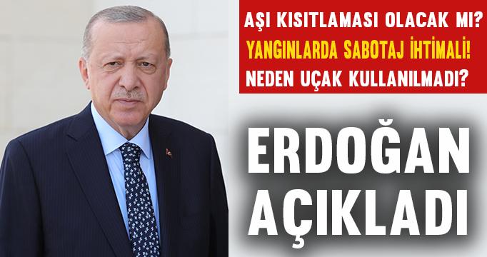 """Cumhurbaşkanı Erdoğan'dan """"orman yangını"""" açıklaması"""