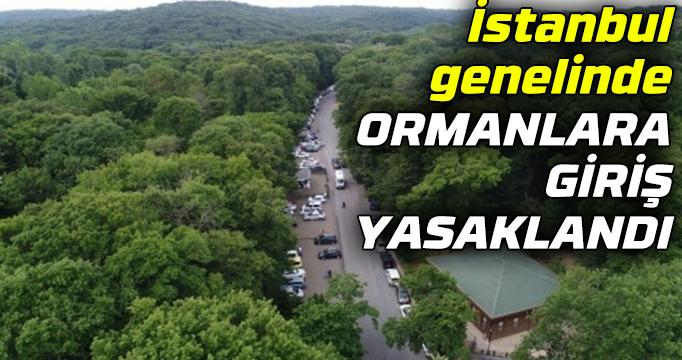 İstanbul genelinde ormanlara giriş yasaklandı