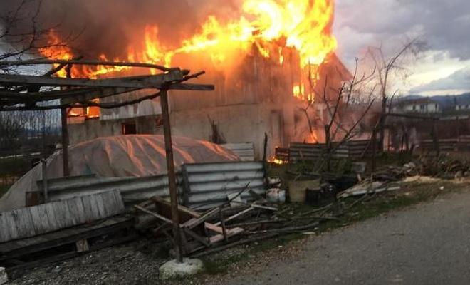 Samanlık yandı, ahırda bulunan hayvanlar kurtarıldı