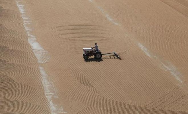 Buğdayın bulgura dönüşüm yolculuğu