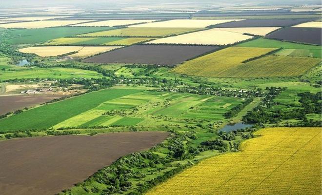 16 binden fazla çiftçiye arazi dağıtıldı