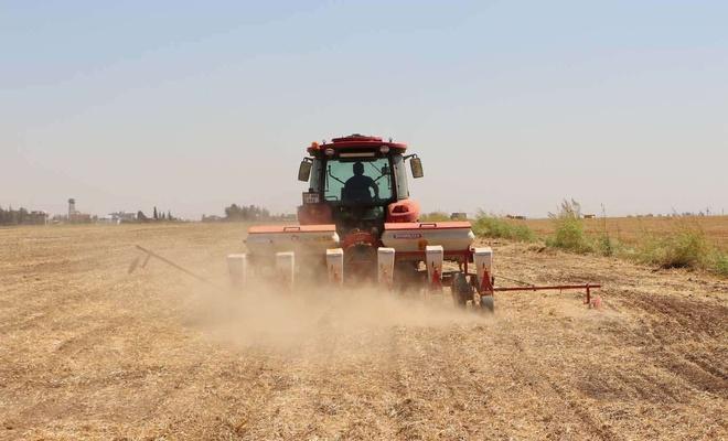 Mardin Ovasında ikinci ürün olan mısır ekim mesaisi yüksek girdi maliyetleri gölgesinde başladı