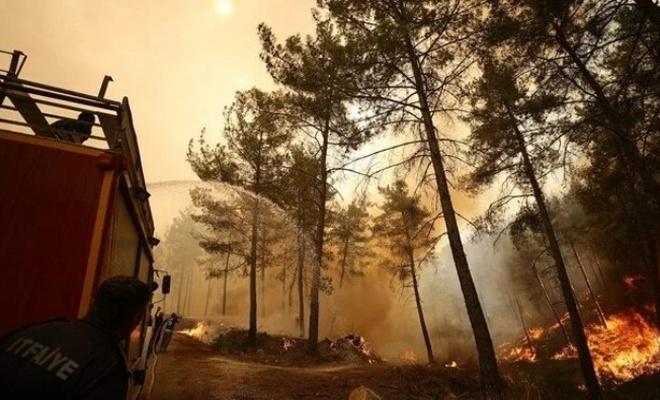 Yangına müdahale eden orman işçileri kaza yaptı!