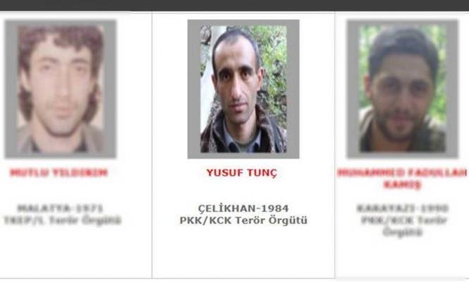 Top PKK member killed in southeast Turkiye