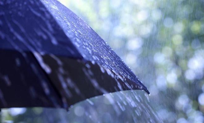Doğu Karadeniz'in iç kesimleri ile Doğu Anadolu'nun kuzey ve doğusu yağışlı geçecek