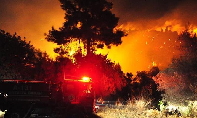 Antalya`da orman yangını