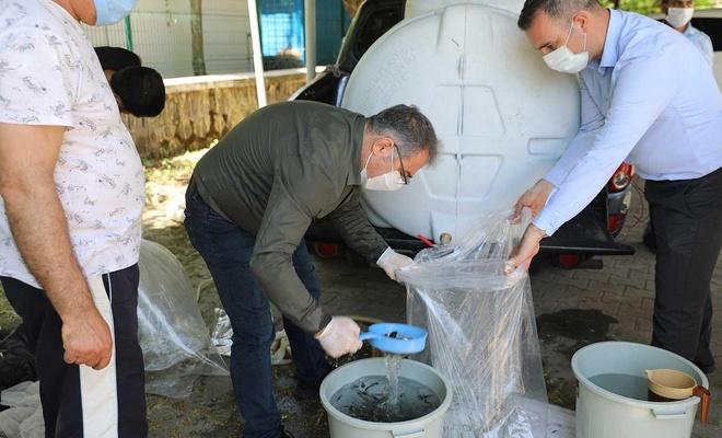 Diyarbakır Tarım ve Orman İl Müdürlüğü ildeki göletlere 180 bin adet sazan yavrusu bıraktı