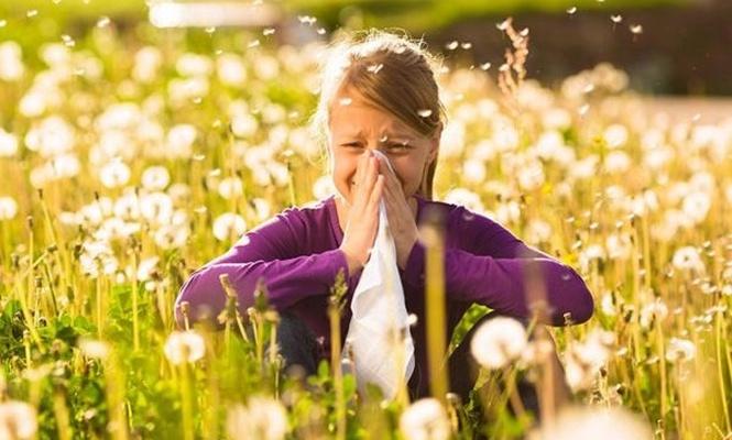 Bahar aylarında ev içerisindeki bitkiler dışarı çıkarılmalı