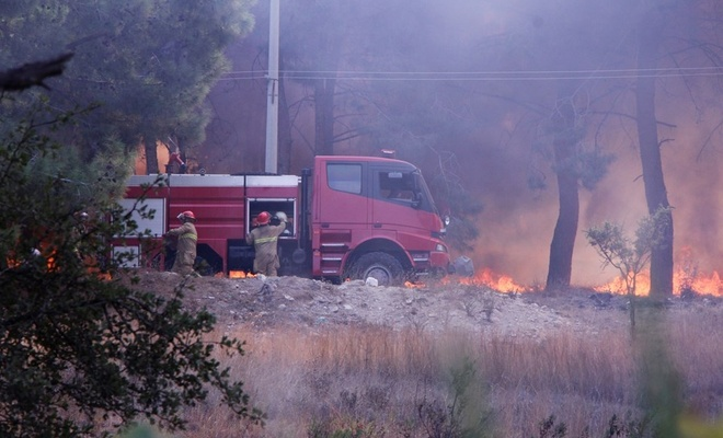 Muğla'da orman yangını!