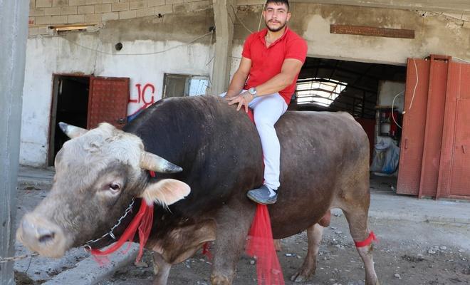 'Kayserili matador' boğası için 50 bin lira istiyor