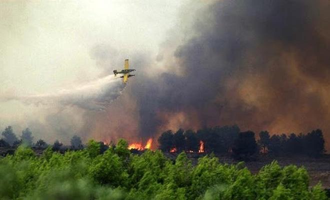Orman yangınlarında  kaç ülke Türkiye'ye yardım etti?