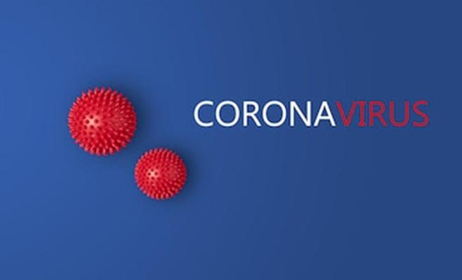 Coronavirus nedeni ile giriş ve çıkış yasağı getirilen 30 büyükşehir