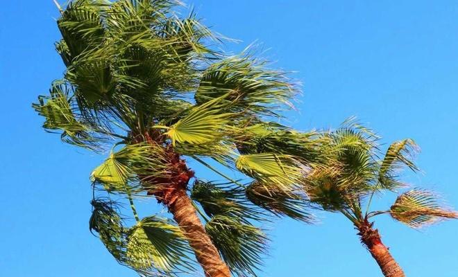 """Meteorolojiden Marmara için """"Kuvvetli Rüzgâr"""" uyarısı"""