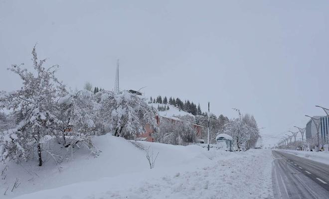 Meteoroloji'den Bitlis Van ve Muş için kar yağışı uyarısı