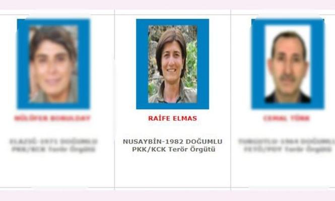Mavi listedeki PKK`li öldürüldü