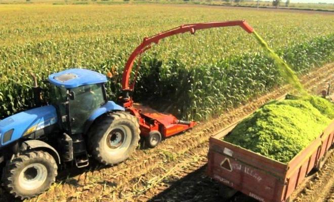 Tarım-ÜFE aylık bazda arttı